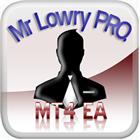 Mr Lowry Pro