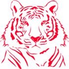 Tiger eaa