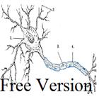 Free Denderit Scalper