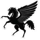 Pegasus Pro