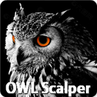 OWL Scalper