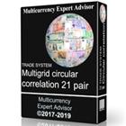 TS Multigrid circular correlation 21 pair