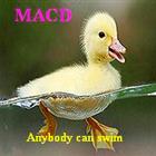 MACD Multi index