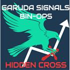 Hidden Cross Binary Options