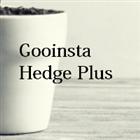 Gooinsta Hedge Plus