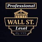 Professional Level