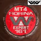 WY Fury 161 MT4
