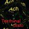 ACh Terminal panel Demo
