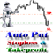 AUTO PUT STOPLOSS TAKEPROFIT