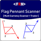 Flag Pennant Scanner