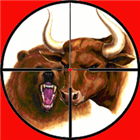 Hunting for Bulls and Bears