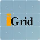 IGrid Expert