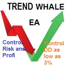 Trend Whale