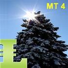 Pine Trees MT4