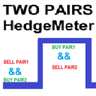Two Pairs Square Hedge Meter