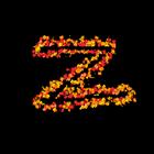 Zeta EA
