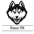 Forex TS