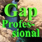 Gap Professional