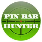 Pin bar Hunter