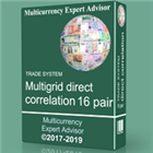 TS Multigrid direct correlation 16 pair