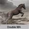 Double MA