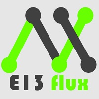 E13 Acid Flux