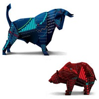 Bull vs Bear Demo