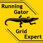 RunningGator5