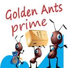 GoldenAnt5 Prime
