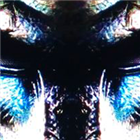 Predator EA gbpusd