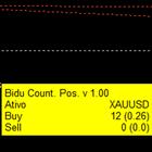 Bidu Position Count