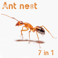 Ant nest 7 in 1