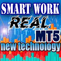 SmartWork MT5