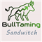 BullTaming Sandwitch MT5
