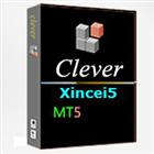 Xincei5