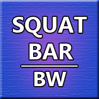 SQUAT Bar BW for MT4