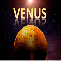 Venus Mt5