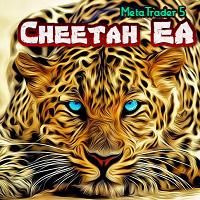 Cheetah EA MT5