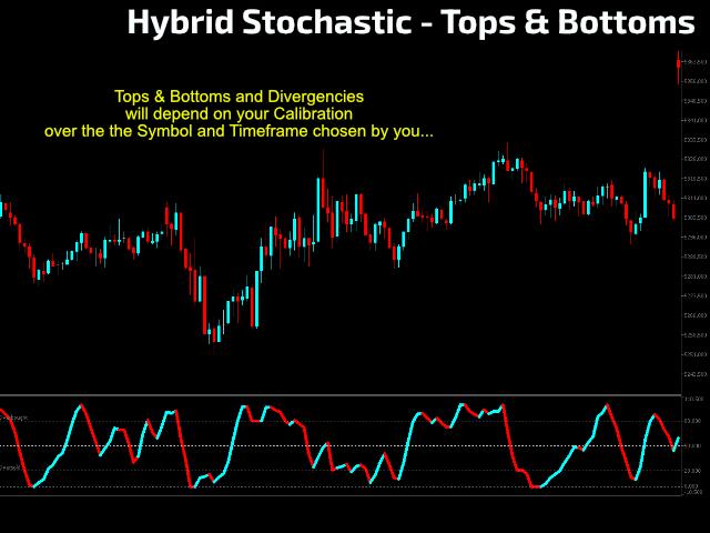 Hybrid Stochastic