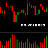 Gm Volumes