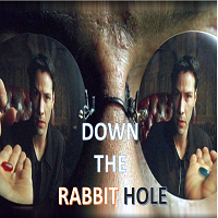 Down the Rabbit Hole MT4