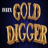 Forex Gold Digger
