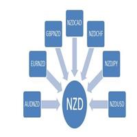 NZDIndex