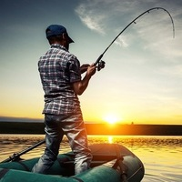 Forex Fishing