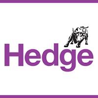 Izi Hedge