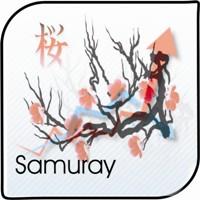 Samurai MA