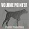 Volume Pointer