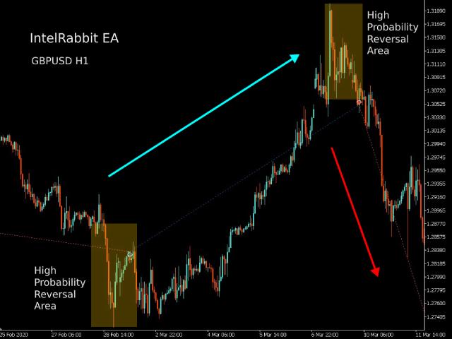 IntelRabbit MT5 EA