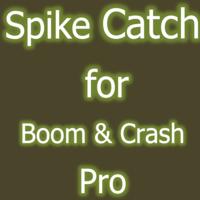 Spike Catch Pro