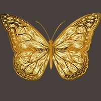 Gold Butterfly Scalper Pro